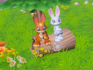 Bunny Adventures 3D